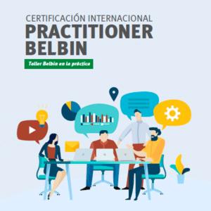 Belbin Practitioner