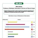Informe-de-Roles-de-Equipo-Belbin-IAP-y-EO-10