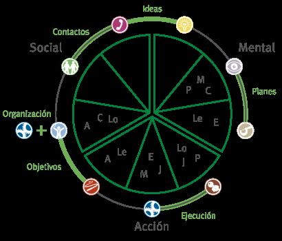 Círculo de Roles Belbin