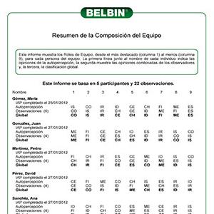 Este informe muestra los Roles de Equipo, desde el más destacado (columna 1) al menos (columna 9), para cada persona del equipo. La primera línea junto al nombre de cada individuo indica las opiniones de la autopercepción, la segunda muestra las opiniones combinadas de los observadores y, la tercera, la clasificación global.