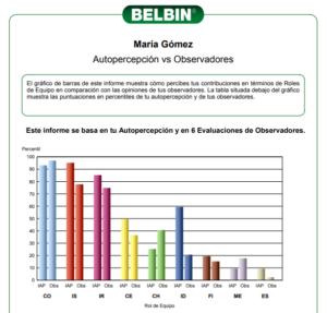 Test de Belbin Oficial