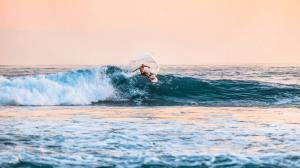 Tipos de roles de equipo: ¡descúbrelos surfeando!