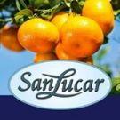 logotipo SanLucar