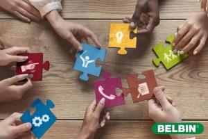 Metodologías Ágiles y Belbin: equipos sin miedo al error